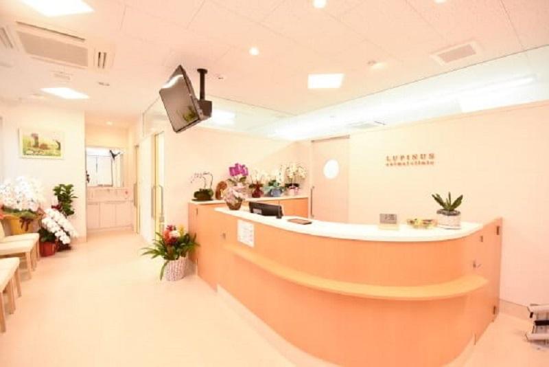 ルピナス動物病院photo
