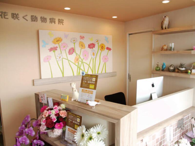 花咲く動物病院photo
