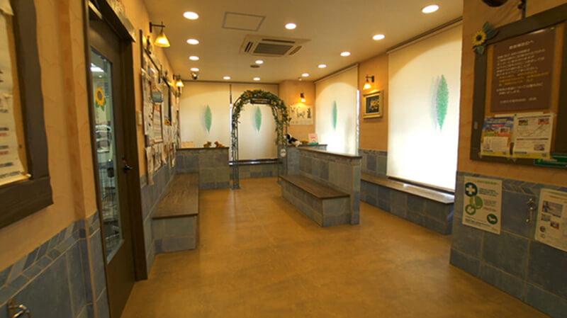 ひまわり動物病院photo