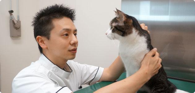 レイクサイド動物病院photo