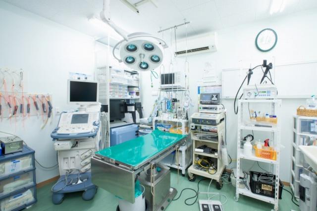 ライフ動物病院photo