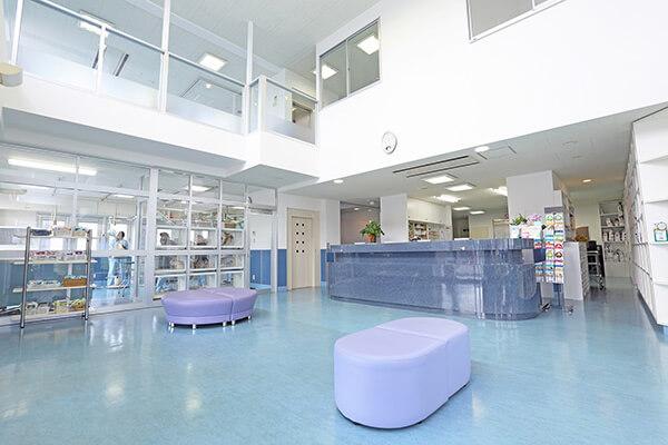 南子安動物病院photo