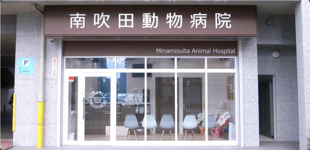 南吹田動物病院photo