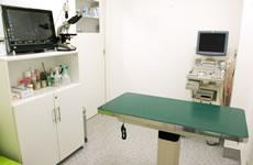 もぐ動物病院photo