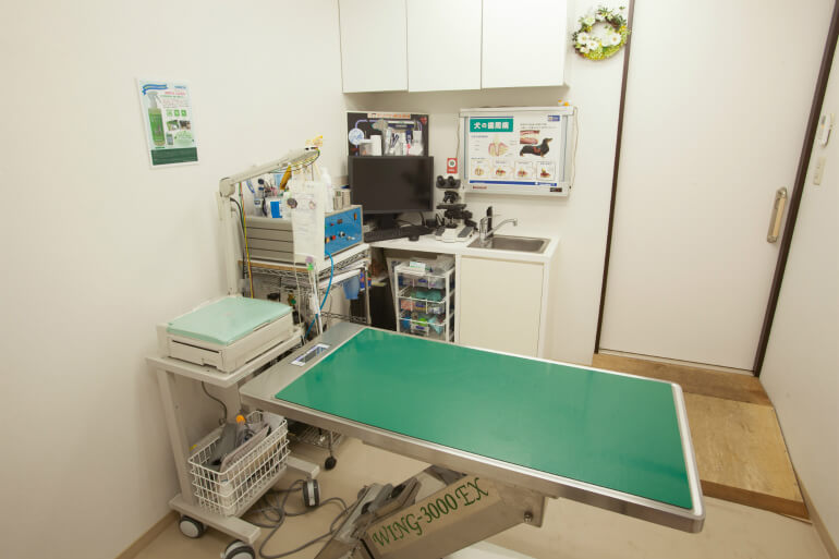 ピア動物病院photo