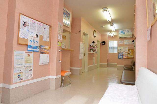 さかい動物病院photo