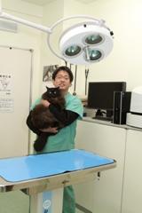 しおせ犬猫病院photo