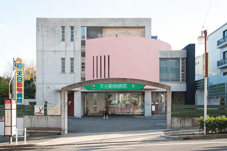 天白動物病院photo